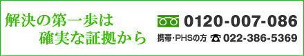 free_minami.jpg